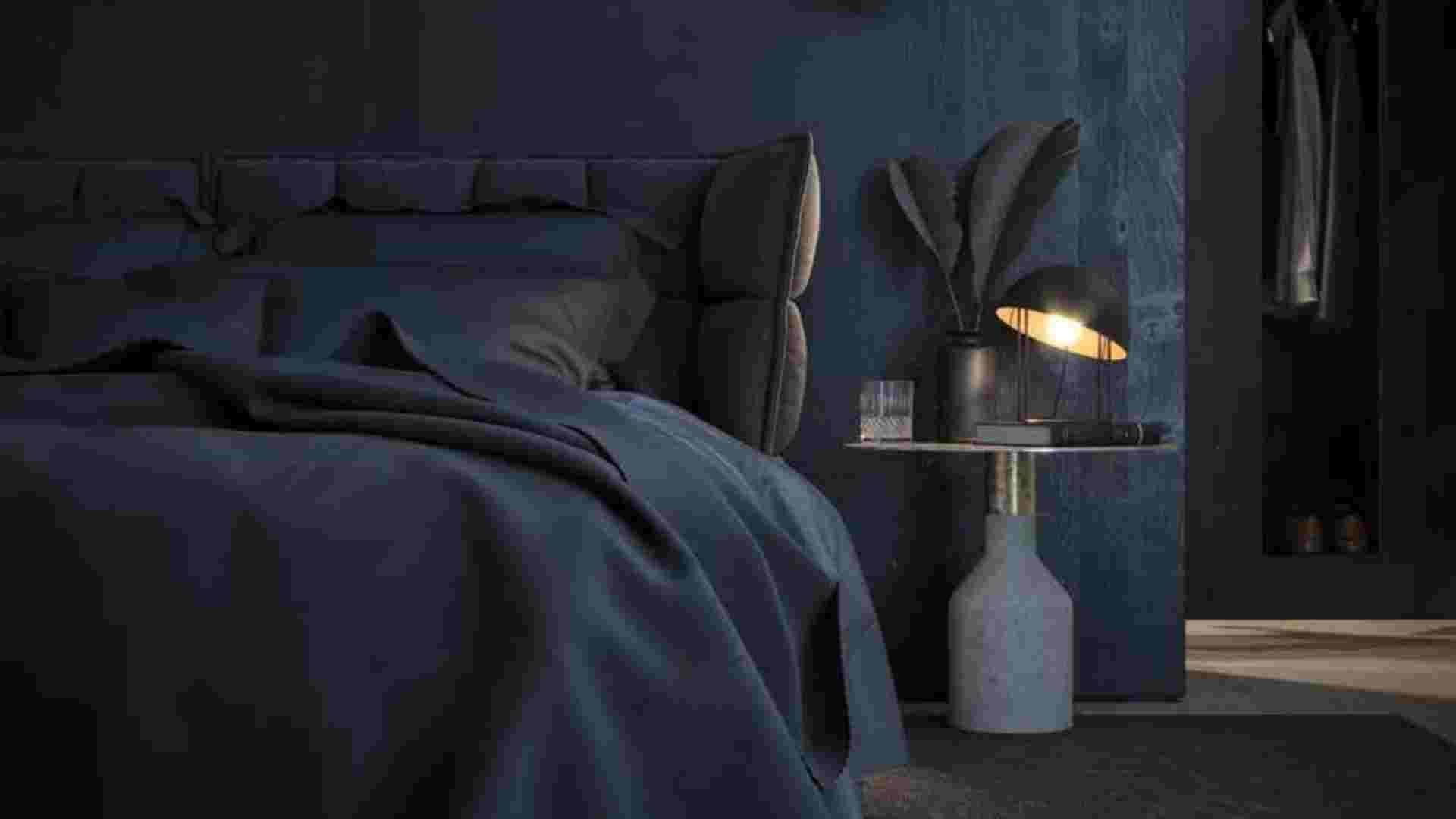 master bedroom with dark interior and darkwood wardrobe