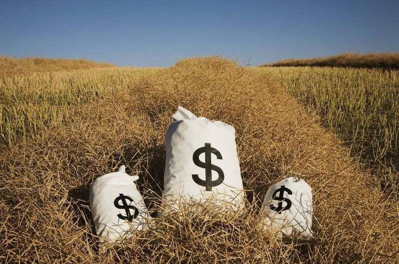 Property Investing in Australia