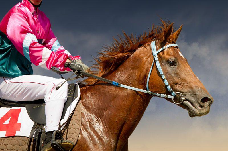 jockey on a thoroughbred horse