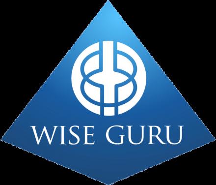 wise guru logo - home